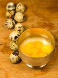 Huevos de las codornices/de la perdiz Imagen de archivo libre de regalías
