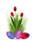 Huevos de los tulipanes y de Pascua Imagenes de archivo