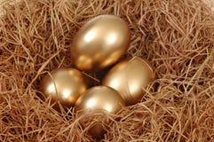 Huevos de oro Fotos de archivo