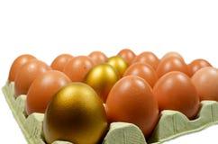 Huevos de oro Fotografía de archivo libre de regalías