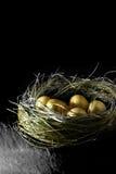 Huevos de oro Foto de archivo libre de regalías