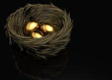 Huevos de oro Imagenes de archivo