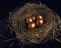 Huevos de oro fotos de archivo libres de regalías