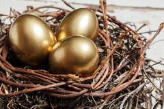 Huevos de oro en jerarquía Imagenes de archivo