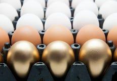 Huevos de oro, huevos del pato y huevos del pollo Foto de archivo libre de regalías
