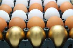 Huevos de oro y huevos del pollo Imagen de archivo libre de regalías