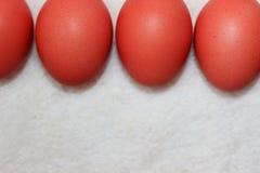 Huevos de Pascua 11 Imagen de archivo libre de regalías