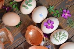 Huevos de Pascua adornados con las hojas y las flores, preparadas para colorear con la cebolla Fotografía de archivo