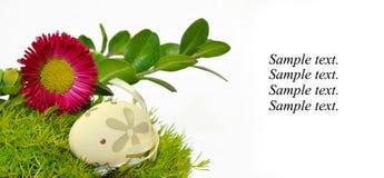Huevos de Pascua adornados en la hierba Imagenes de archivo