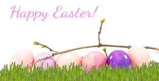 Huevos de Pascua aislados en blanco Fotos de archivo