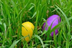 Huevos de Pascua amarillo y púrpura Imagenes de archivo