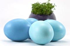 Huevos de Pascua azules con berro fresco Imagen de archivo