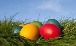 Huevos de Pascua coloreados en hierba con el cielo azul Imagenes de archivo