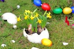 Huevos de Pascua coloridos con los narcisos Imagen de archivo