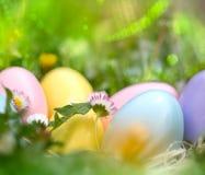 Huevos de Pascua coloridos en el jardín Imagen de archivo libre de regalías