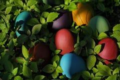 Huevos de Pascua coloridos en naturaleza Fotos de archivo