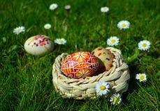 Huevos de Pascua coloridos en una cesta en una hierba verde Fotografía de archivo libre de regalías