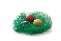 Huevos de Pascua coloridos en una jerarquía de la hierba verde Fotos de archivo libres de regalías