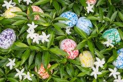Huevos de Pascua coloridos ocultados en el arbusto verde Foto de archivo libre de regalías