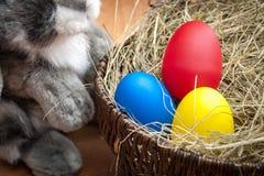 Huevos de Pascua con el conejito Imagenes de archivo