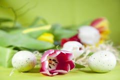 Huevos de Pascua con el tulipán Imagen de archivo libre de regalías