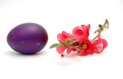 Huevos de Pascua con la flor Fotos de archivo libres de regalías