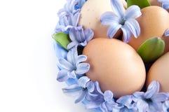 Huevos de Pascua con las flores Fotografía de archivo libre de regalías