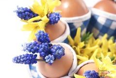 Huevos de Pascua con las flores Fotografía de archivo