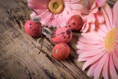 Huevos de Pascua con las flores de la margarita del gerbera Foto de archivo libre de regalías
