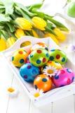 Huevos de Pascua con las flores de la primavera Fotos de archivo