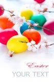 Huevos de Pascua con las flores del flor de la primavera Imagen de archivo libre de regalías