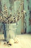 Huevos de Pascua con un ramo de ramas de la primavera de un sauce en un cubo Imagenes de archivo