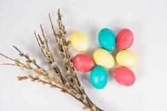 Huevos de Pascua con un sauce Foto de archivo libre de regalías