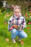 Huevos de Pascua de la caza foto de archivo