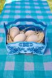 Huevos de Pascua de madera en cesta azul Imagen de archivo libre de regalías