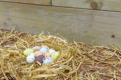 Huevos de Pascua del chocolate en una jerarquía Imagenes de archivo