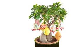 Huevos de Pascua del resorte en árbol Fotografía de archivo