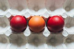 Huevos de Pascua de diversos colores en bandeja fotos de archivo
