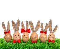 Huevos de Pascua divertidos de los conejitos con los oídos grandes en hierba verde Imagen de archivo libre de regalías