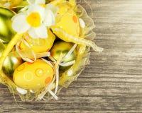 Huevos de Pascua en cesta amarilla y luz del sol Fotos de archivo