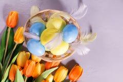 Huevos de Pascua en cesta con los tulipanes en fondo gris Fotos de archivo