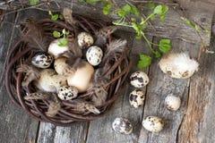 Huevos de Pascua en cesta de mimbre Fotos de archivo