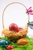 Huevos de Pascua en cesta de mimbre en blanco Foto de archivo libre de regalías