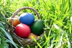 Huevos de Pascua en cesta en hierba Foto de archivo
