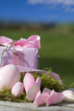Huevos de Pascua en color de rosa con un regalo y un cielo azul Fotografía de archivo