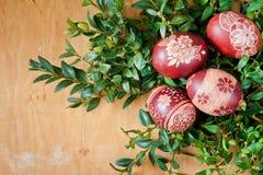 Huevos de Pascua en el boj verde Imagen de archivo libre de regalías