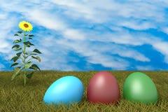 Huevos de Pascua en gras con el cielo nublado y el girasol azules Fotografía de archivo