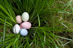 Huevos de Pascua en hierba Imagen de archivo
