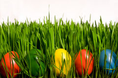 Huevos de Pascua en hierba Fotos de archivo