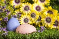 Huevos de Pascua en hierba Imágenes de archivo libres de regalías